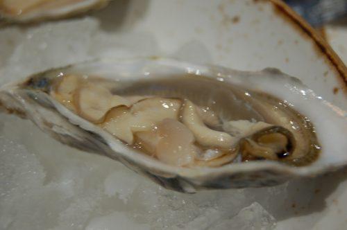 Maak seker jy eet genoeg oesters!