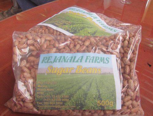 Rejanala Farms sells these organic sugar beans, starting at R10 a pack, to the Thaba Nchu community.