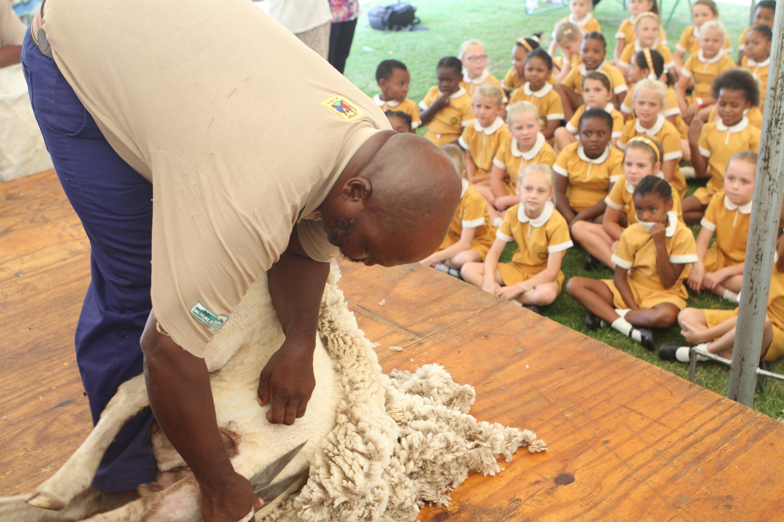 Wol Waai Tydens Skolebewusmakingsveldtog Bloemfontein