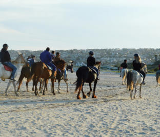 Horse-riding on the beach for the whole family.